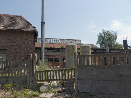 Krosniewice-1020909