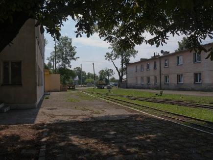Krosniewice-1020919